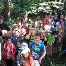 Ferienkinder erkunden Zauberwald