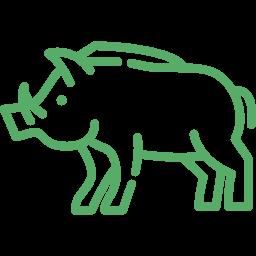 Sauenfang